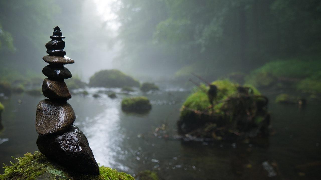 問題を「環境のせいにしない」。「私は環境など信じない」【言葉】ジョージ・バーナード・ショー